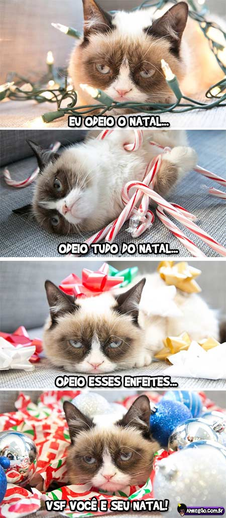 Pense num gato animado para o Natal! =D