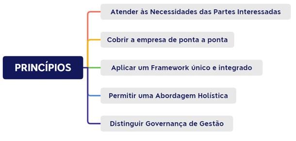 Princípios do COBIT 5
